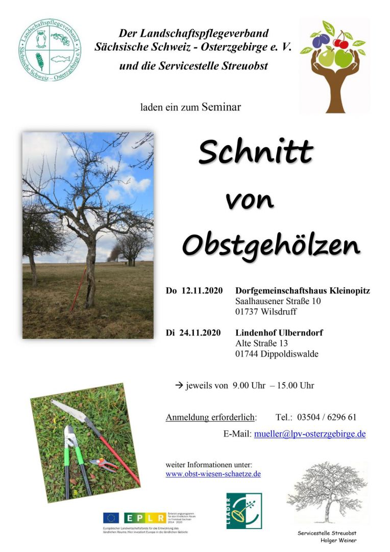 tl_files/downloads/pdf_plakate/Plakat Gehoelzschnitt-Nov2020-1.jpg